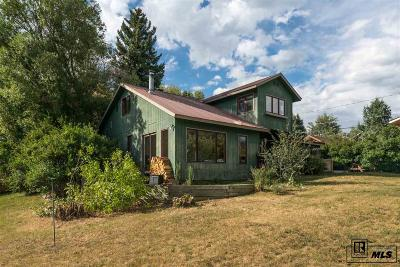 Routt County Single Family Home For Sale: 1141 Soda Ridge Way