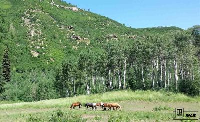 Routt County Residential Lots & Land For Sale: 25500 Routt County Road 45z