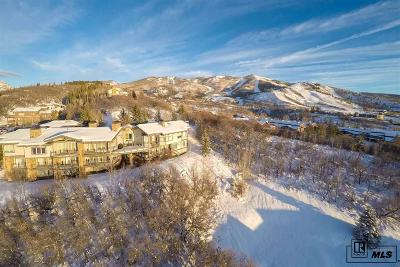 Steamboat Springs Single Family Home For Sale: 1297 Overlook Drive