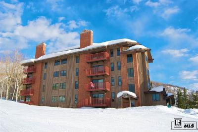 Steamboat Springs Condo/Townhouse For Sale: 2430 Ski Trail Lane #104