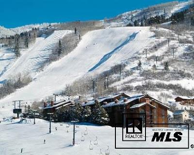 Steamboat Springs Condo/Townhouse For Sale: 2420 Ski Trail Lane #515