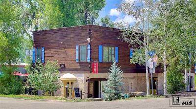 Steamboat Springs Condo/Townhouse For Sale: 135 11th Street, #b