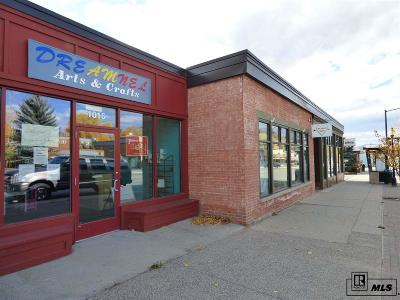 Steamboat Springs CO Commercial For Lease: $11,760