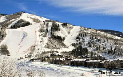 Steamboat Springs Condo/Townhouse For Sale: 2420 Ski Trail Ln, #514