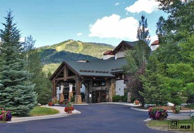 Steamboat Springs Condo/Townhouse For Sale: 1463 Flattop Circle Unit 201