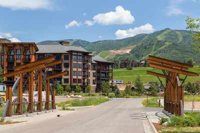 Steamboat Springs Condo/Townhouse For Sale: 1175 Bangtail Way #4124