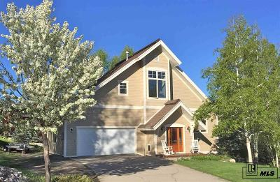 Steamboat Springs Single Family Home For Sale: 475 Willow Court