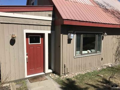 Steamboat Springs Single Family Home For Sale: 434 Emerald Court