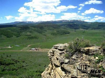 Routt County Residential Lots & Land For Sale: Tbd County Road 132