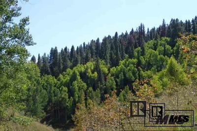 Routt County Residential Lots & Land For Sale: Tbd Lone Tooth Trl #Lot 3