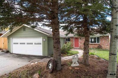 Steamboat Springs Single Family Home For Sale: 40551 Steamboat Dr.