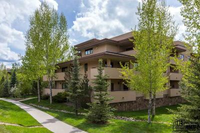 Steamboat Springs Condo/Townhouse For Sale: 2780 Eagle Ridge Drive