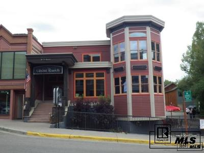 Steamboat Springs CO Commercial For Sale: $3,490,000