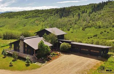 Steamboat Springs Single Family Home For Sale: 47850 Routt County Road 52w