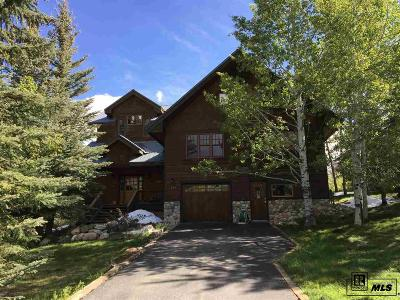 Steamboat Springs Single Family Home For Sale: 470 Bluebell Court