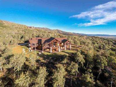 Steamboat Springs Single Family Home For Sale: 175 Deer Clover Ln.