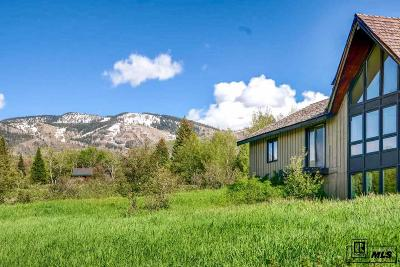 Routt County Single Family Home For Sale: 2249 Anglers Drive