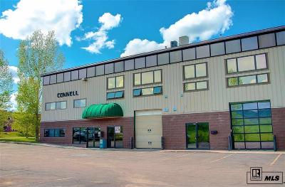 Steamboat Springs Commercial For Sale: 2673 Jacob Cir., #2 & #3