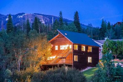 Steamboat Springs Single Family Home For Sale: 650 Amethyst Drive