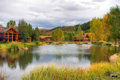 Steamboat Springs Single Family Home For Sale: 41401 County Road 38a