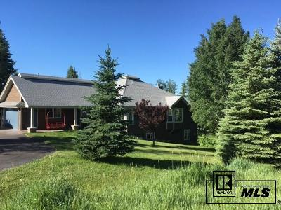 Routt County Single Family Home For Sale: 458 Blue Sage Circle