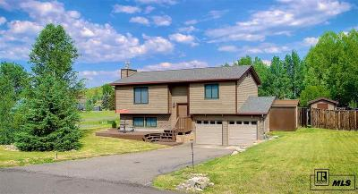 Steamboat Springs Single Family Home For Sale: 40305 Anchor Way