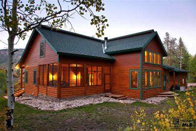 Steamboat Springs Single Family Home For Sale: 31650 Greenridge Drive
