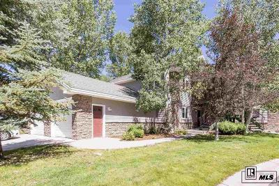 Steamboat Springs Condo/Townhouse For Sale: 1580 Mustang Run,