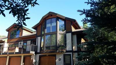 Steamboat Springs Condo/Townhouse For Sale: 1895 Hunters Drive