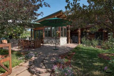 Steamboat Springs Farm For Sale: 26333 Cr 33a