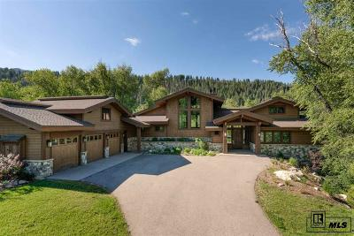 Steamboat Springs Single Family Home For Sale: 2745 Whitewater Lane