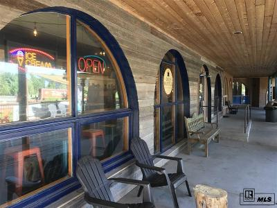 Steamboat Springs Commercial For Sale: 2500 Village Drive