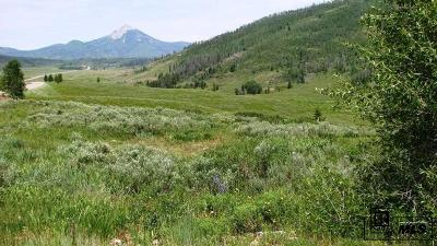 Routt County Residential Lots & Land For Sale: 27215 Golden View Trail