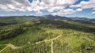 Routt County Residential Lots & Land For Sale: 57605 County Road 62