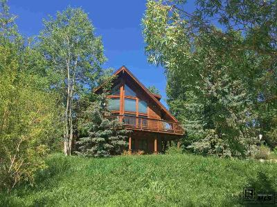 Steamboat Springs Single Family Home For Sale: 1070 Uncochief