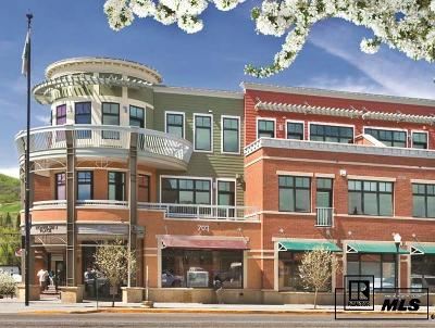 Steamboat Springs Commercial For Sale: 703 Lincoln Avenue, #b102