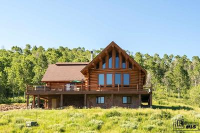 Steamboat Springs Single Family Home For Sale: 47505 County Road 52w