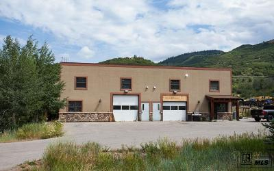 Steamboat Springs Commercial For Sale: 2648 Copper Ridge Road