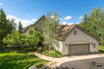 Steamboat Springs Single Family Home For Sale: 1031 Steamboat Blvd