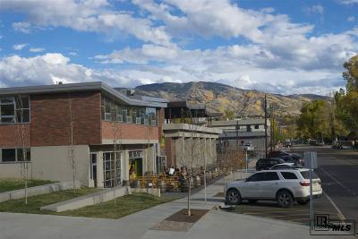Steamboat Springs Commercial For Sale: 910 Yampa #Unit C1-