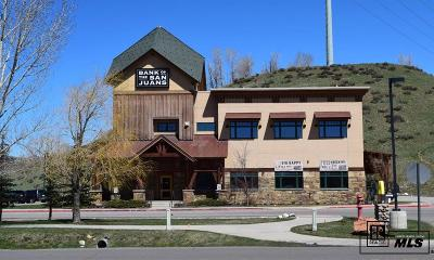 Steamboat Springs Commercial For Sale: 270 Anglers Dr
