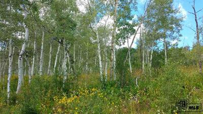 Routt County Residential Lots & Land For Sale: 57875 Longfellow Way
