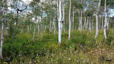 Routt County Residential Lots & Land For Sale: 57855 Longfellow Way
