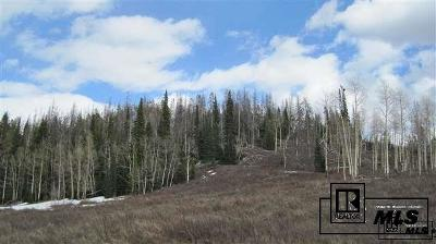 Routt County Residential Lots & Land For Sale: Tbd Golden Tide Place