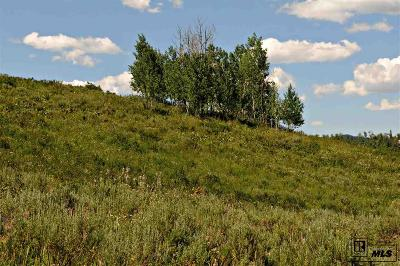 Routt County Residential Lots & Land For Sale: 57175 Green Bird Place