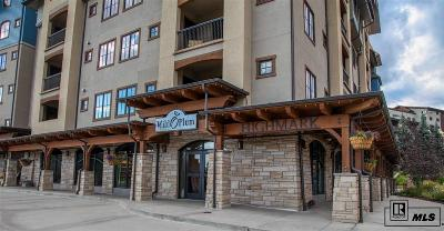 Steamboat Springs Commercial For Sale: 2525 Village Drive