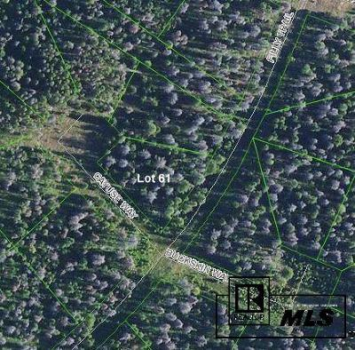 Routt County Residential Lots & Land For Sale: 20930 Cayuse Way