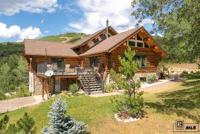 Steamboat Springs Single Family Home For Sale: 30500 Game Trails Drive