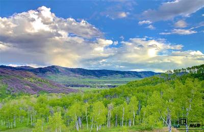 Routt County Residential Lots & Land For Sale: Tbd Olive St.