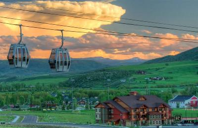 Steamboat Springs Condo/Townhouse For Sale: 2525 Cattle Kate Cir #4205 #4205